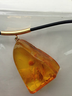 NEW Baltic Amber Necklace with Fossil Insect