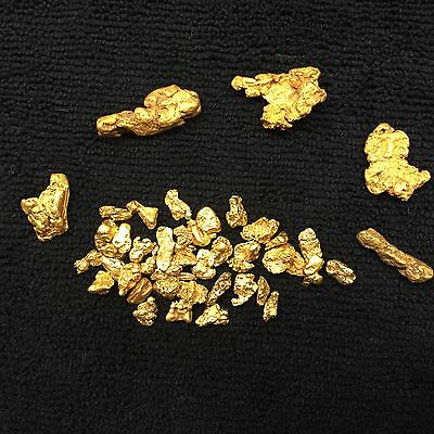 2 1/2 LB NUGGET RESERVE Gold Panning Paydirt Concentrate - CHUNKY GOLD