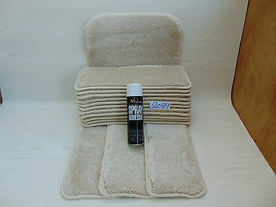 Stair pads / treads 14 off and 1 Big Mats with a FREE can of SPRAY GLUE  2089