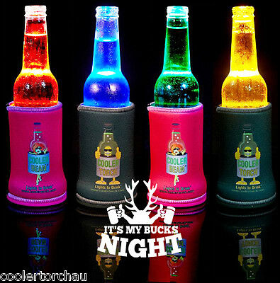 New 20 PACK COOLER BEAM MIXED COLOURS BUCKS NIGHT PACK PACK TORCH