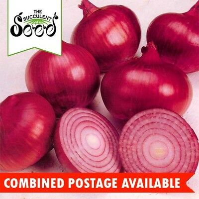 ONION - Red Burgandy (400 Seeds)