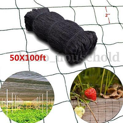"100'X50' Anti Bird Baseball Poultry Soccer Game Fish Netting 2"" Mesh Holes Plant"