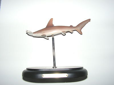 Marine Life Quality Model - Scalloped Hammerhead Shark - one only