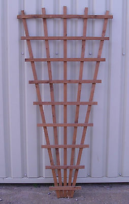 FAN TRELLIS 6' x 3' PRESSURE TREATED for climbing decorative garden plants
