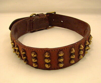 Vintage Large Dog Collar in Leather with Brass Studs and Fittings