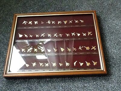 Gold plated aeroplanes in display cases Fabulous Present For Someone Special