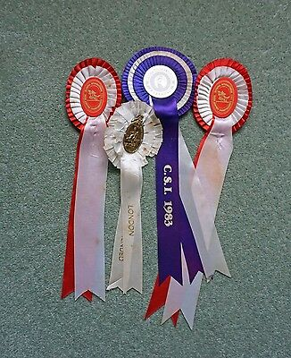 Collection Of Rosettes ( Inc. Olympia ) Won By Apollo Ridden By Geoff Glazzard