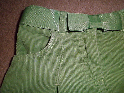 Janie and Jack 3T Skirt Penguin Winter Green Pleated Cotton Corduroy Pre-owned