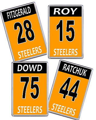 Sheffield Steelers 16/17 Player name and number Ice Hockey Fridge Magnet
