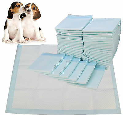 100 x DOG PUPPY HOUSE LARGE ABSORBENT TRAINING TRAINER PADS TOILET WEE 45 x 60CM