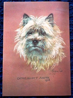 CAIRN RESCUE CHARITY Pack x 10 Note Cards Notelets MARJORIE COX Cairn Dog Sealed