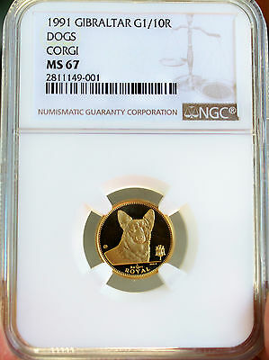1991 Gibraltar Gold Corgi Dog Coin Ngc Ms67 - Pobjoy Mint - First Year Of Issue