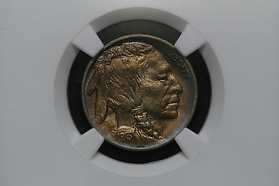 1913 Type 1 Five 5 Cents USA - NGC Certified
