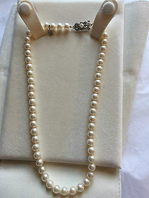 """Mikimoto Pearl Necklace 7-6.5mm 18K White Gold Clasp 16"""""""