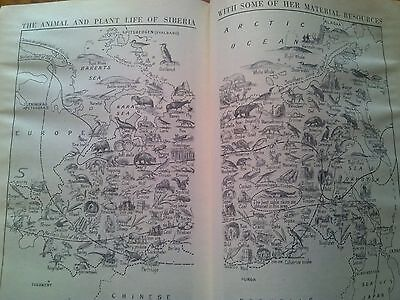 Animal & Plant Life of Siberia 2 Pages Taken from 1940s Encyclopedia