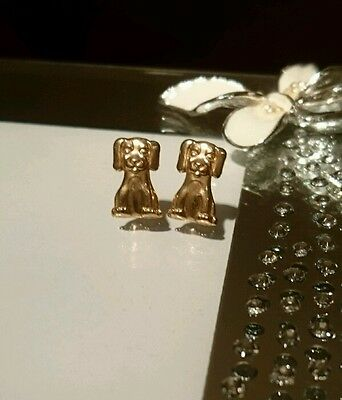9ct gold stud puppy dog earrings