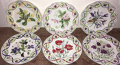 Wedgwood Plates Flower Artists Of Kew Set Of Six Limited Edition