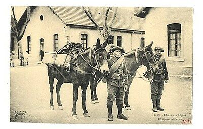 CPA Chasseurs-Alpins Equipage Muletier