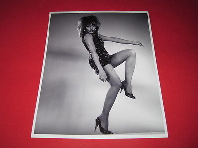 TINA TURNER  10x8 inch lab-printed photo P/8757