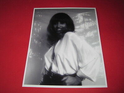 TINA TURNER  10x8 inch lab-printed photo P/8777