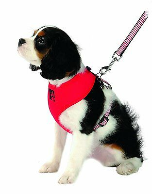 BN BB Bobby Red Designer padded Harness Dog Puppy Padded Mesh Small