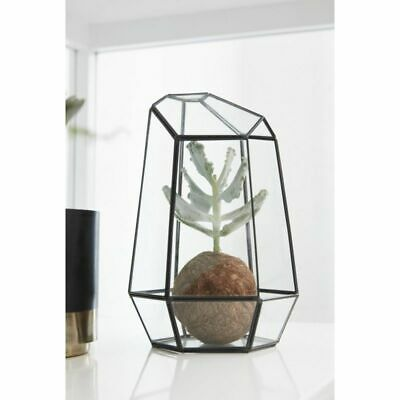 Tall Terrarium Metal and Glass Plants Scandinavian Design Danish Nordic by Hu...
