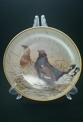 Black Grouse Franklin Porcelain By Basil Ede Collectable Plate