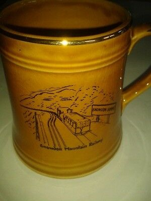 Snowdon Mountain Railway Tankard