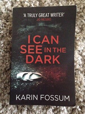 I Can See in the Dark by Karin Fossum (Paperback, 2014)