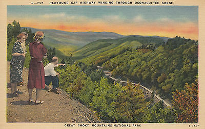 TENNESSEE - Newfound Gap Highway winding thro Gorge, Great Smoky Mountains Park