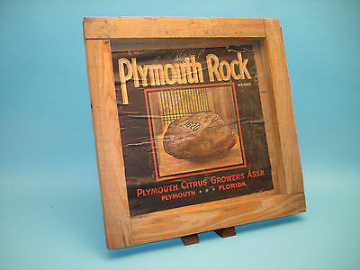 Original Plymouth Rock Brand Citrus Fruit Crate Label on Wood Plymouth, Florida