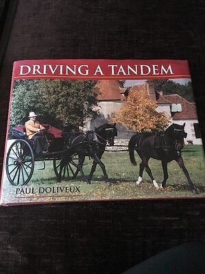 Driving A Tandem By Paul Doliveux