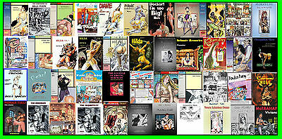 Collection Of  44 Erotic Graphic Novels By Top Artists