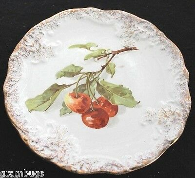 Beautiful Vintage Severs Cherry Decorated Gold Trimmed Plate