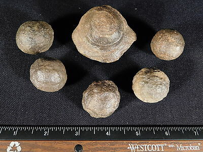 A Big Lot of SIX! Natural Moqui Marbles or Shaman Stones from Utah 288gr