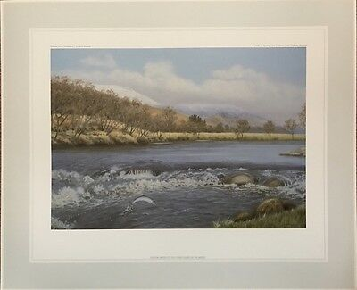 Richard Robjent Limited Edition Print - Titled  Salmon,  River Helmsdale.