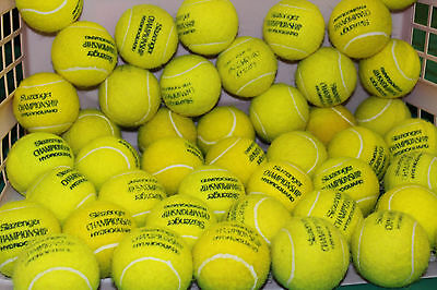 15  used tennis balls for coaching  or practice or for dog play