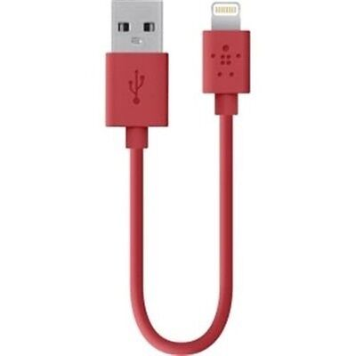 Sync Charge Cable Red F8J023BT04-RED Belkin