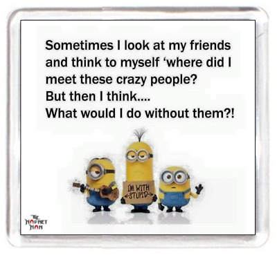 Fridge Magnet Minion Charactor Crazy Mad Friends Meet Remeber Live Without Peopl