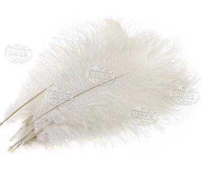 "10 x Ostrich Feathers Fluffy Arts Crafts 10""-12"" Long White"