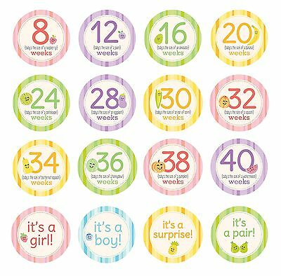 Pearhead Pregnancy Milestone Photo Sharing Belly Stickers 16 Stickers Included