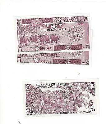 Somalia  5 Shillings  1983  3 Pcs In Lot  Nice Unc