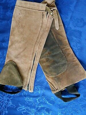 BROWN suede leather half chaps ADULT
