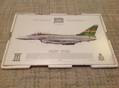 Royal Air Force Signed 3(Fighter) Squadron 100th Anniversary Print Typhoon RAF
