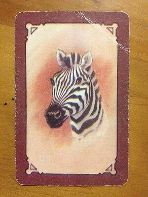 playing cards swap 1 x COLES Card - UnNamed . Zebra