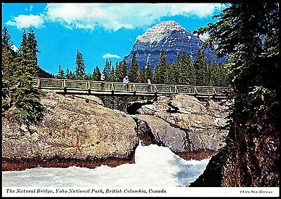 Postcard  The Natural Bridge Yoho National Park British Columbia Canada Unposted