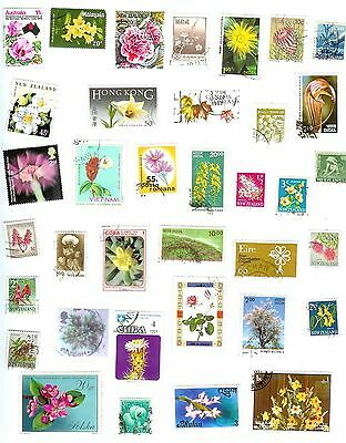 Flowers And Plants - 36 Different