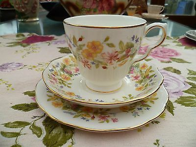 Vintage Colclough English China Trio Tea Cup Saucer Plate Hedgerow 8682