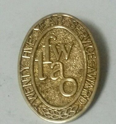 Sterling Silver 25 year FW lapel PIn-925 Silver- gold plated ?