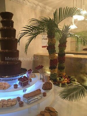 Chocolate Fountain Hire And Fruit Palm Tree